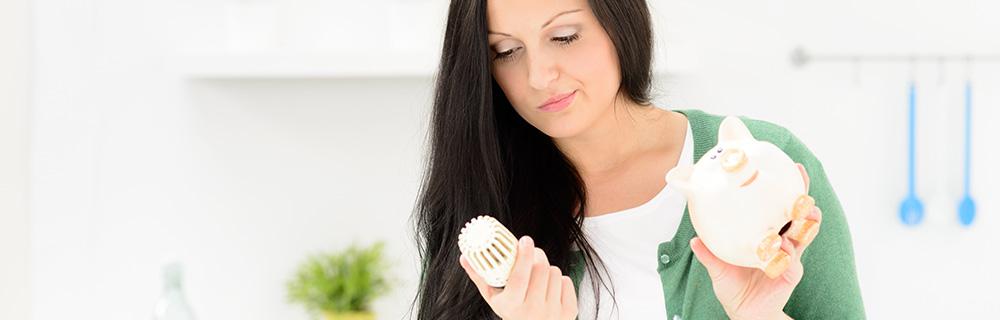 Fördermittel für Heizungen Thermostat und Sparschwein